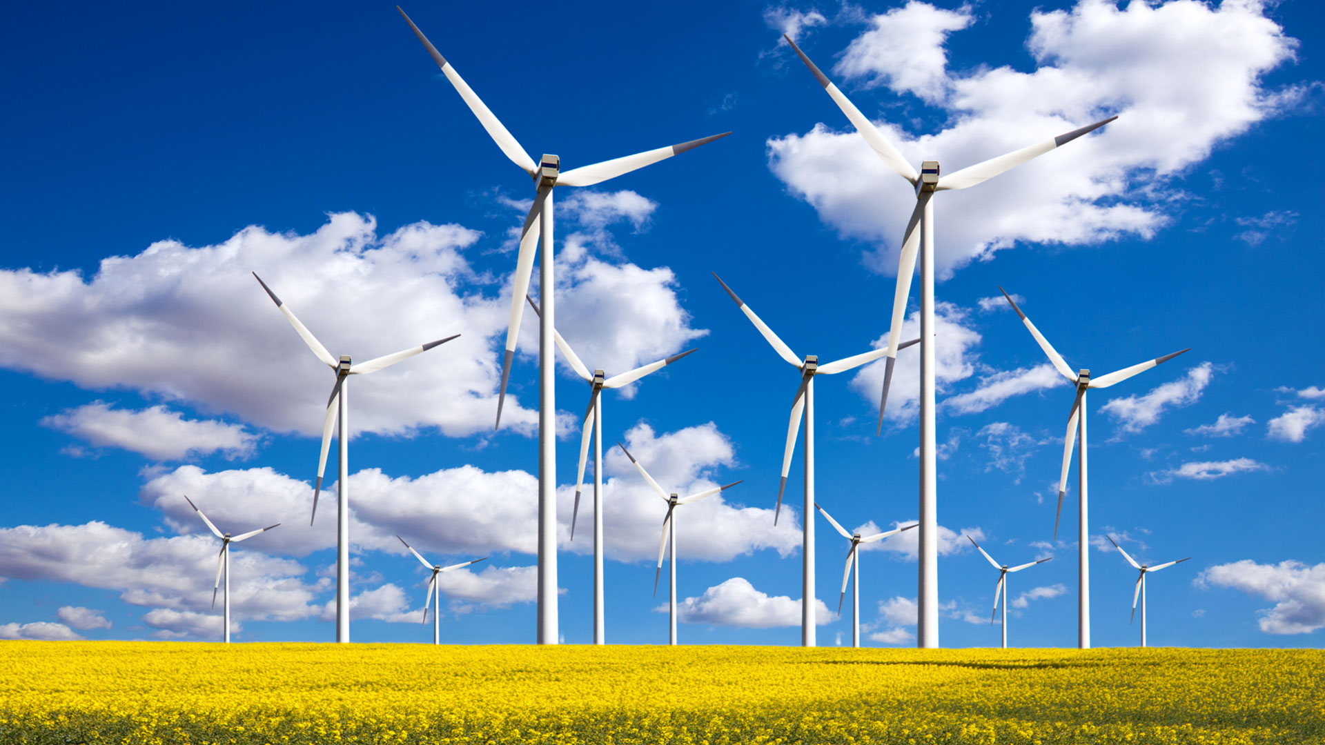 Get Out Of The Red And Try These Green Energy Tips